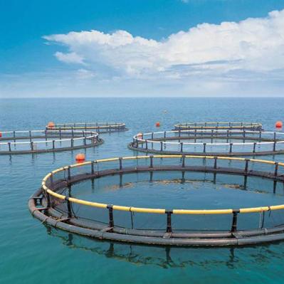 水产养殖智能监控系统