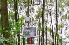 永宁县建设多功能自动气象站为农业保驾护航